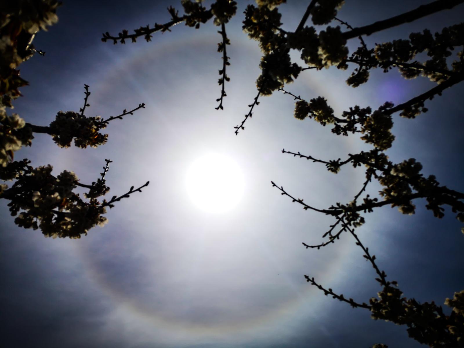 ALONE SOLARE 22°: cosa genera il fenomeno ottico atmosferico