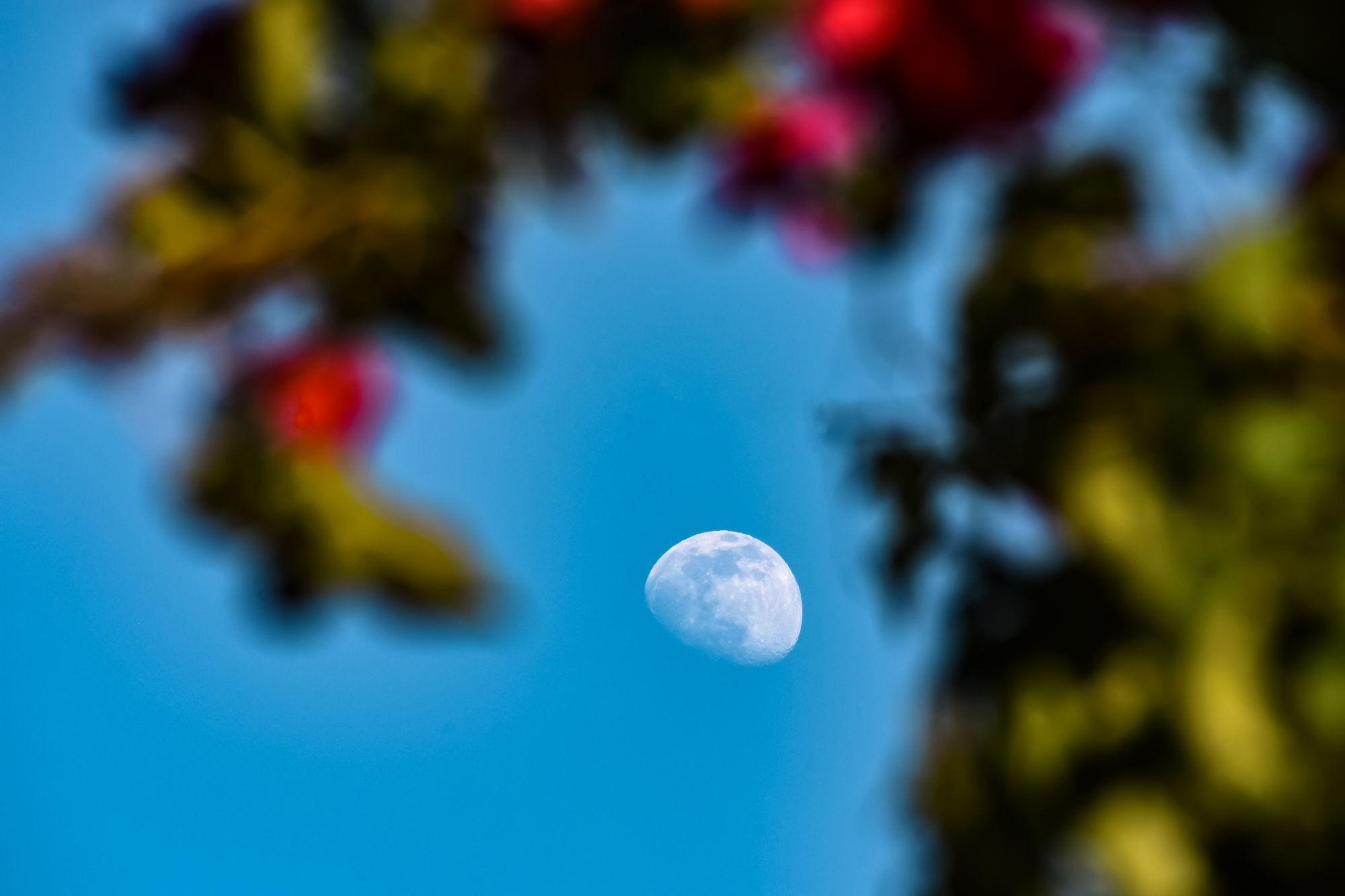 Arriva la LUNA PIENA dei fiori al perigeo (con eclissi)